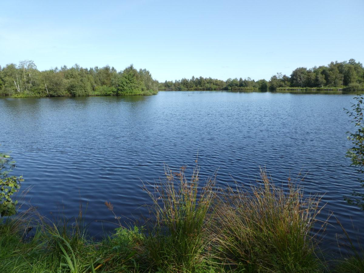 Tag 6: Heide und Moor